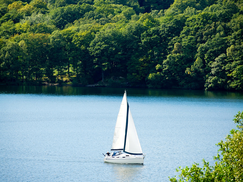 Фото Природа Леса Реки Лодки Парусные 3000x2250 лес река речка
