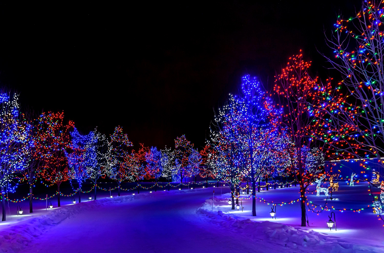 Скачать Обои Зима Новый Год