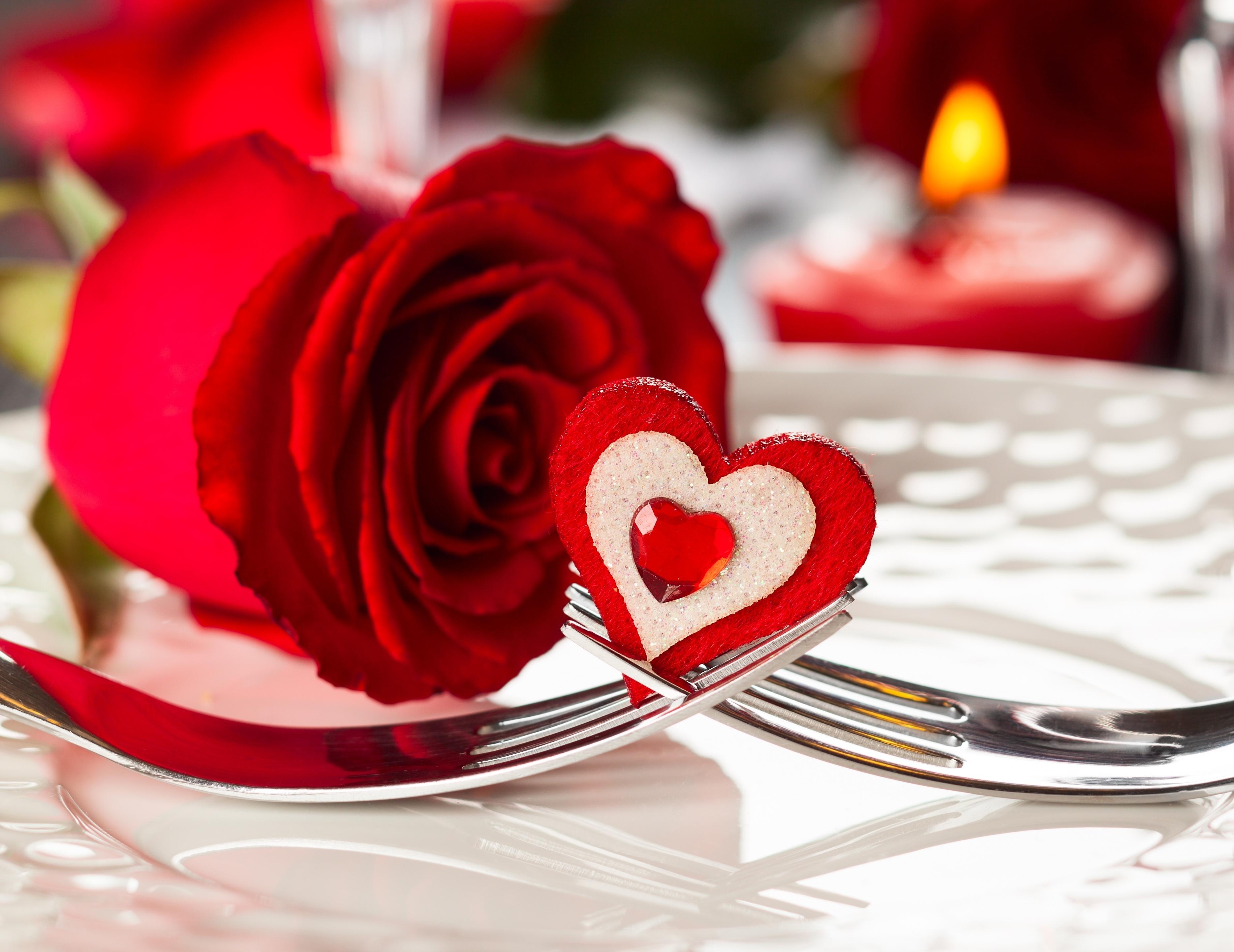 сердце в розах загрузить