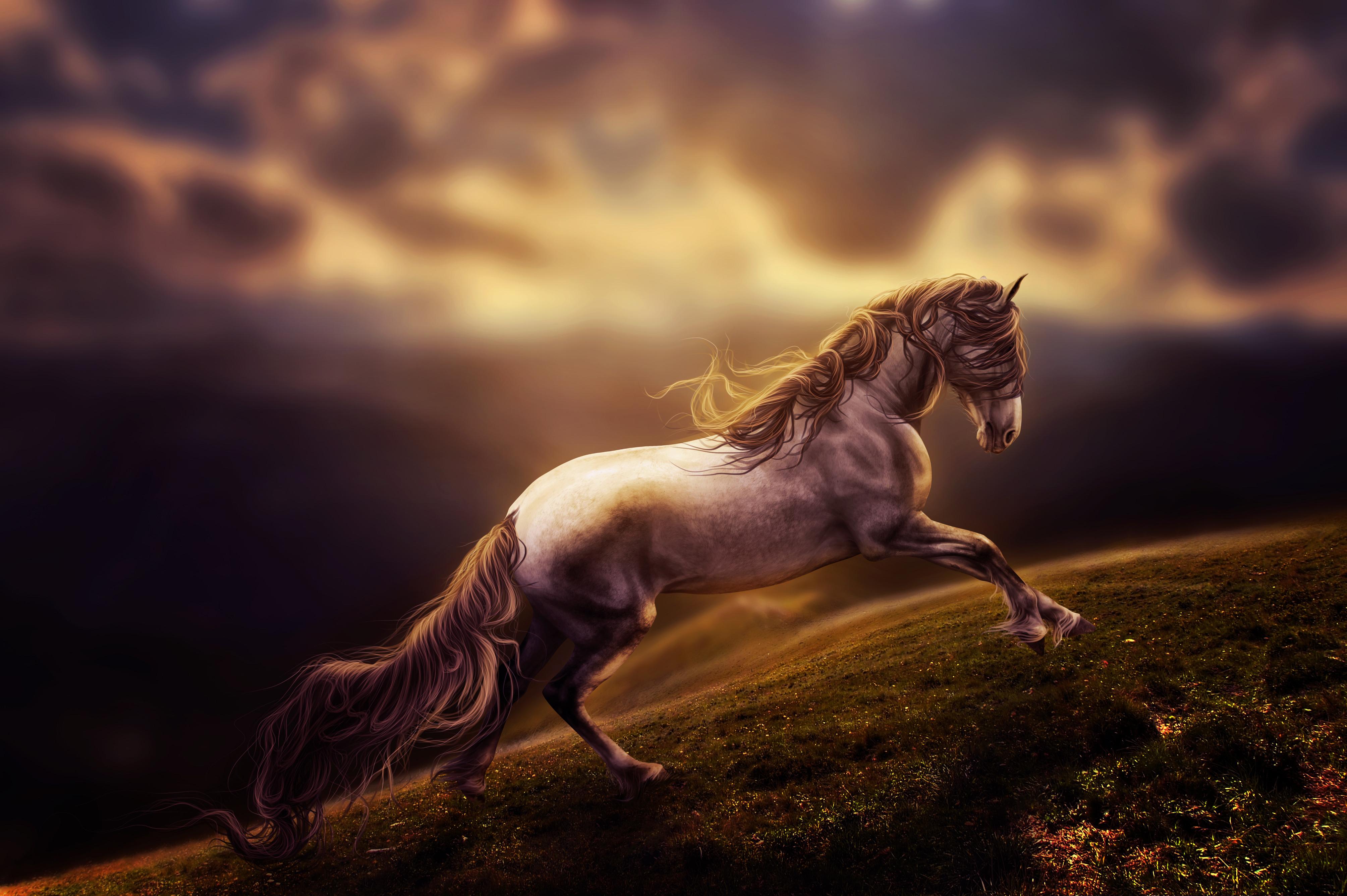 Лошадь части креатив скачать