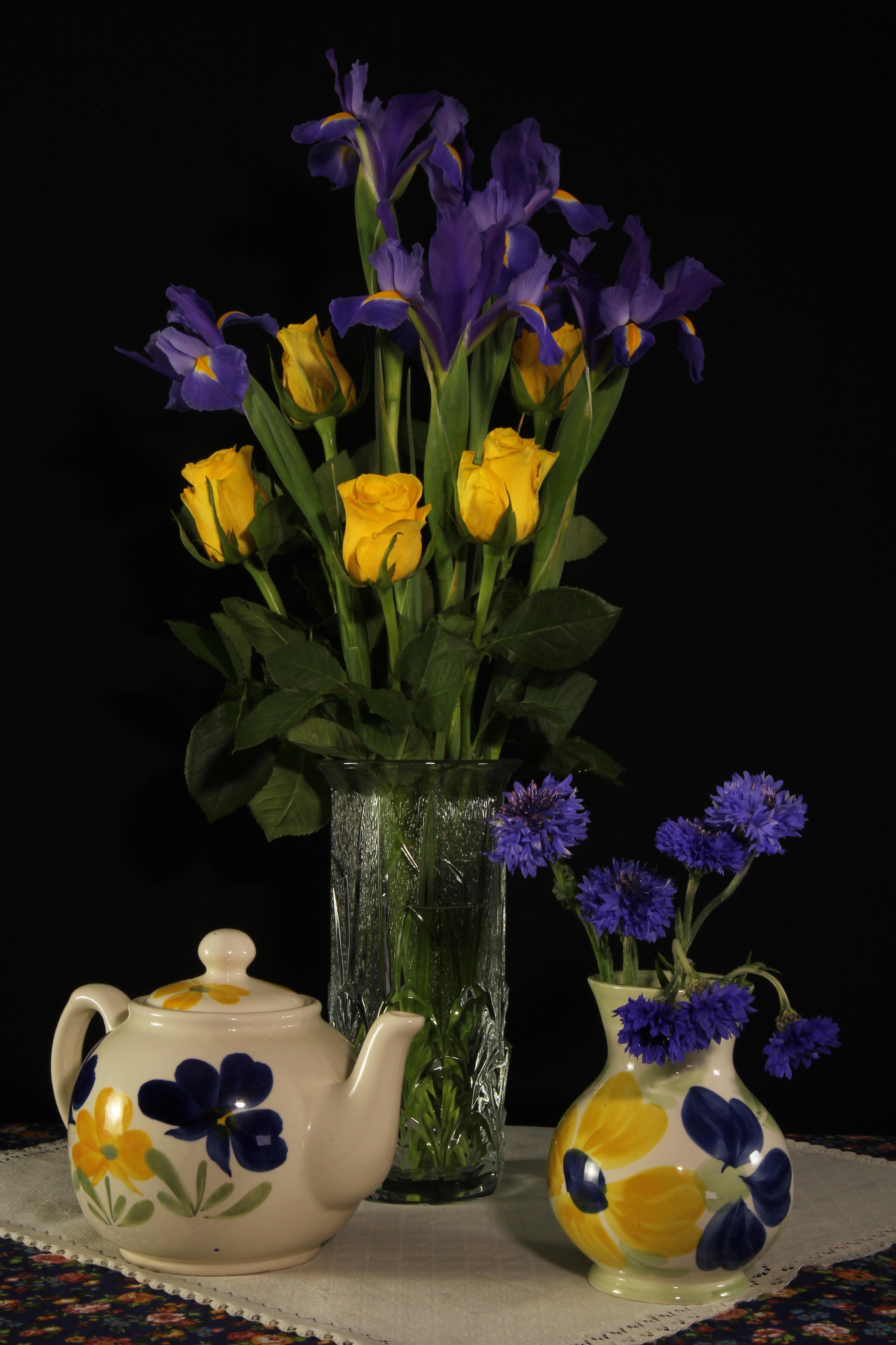 Фото роза ирис цветок Чайник Ваза Васильки Натюрморт Черный фон  для мобильного телефона Розы Цветы Ирисы вазы вазе на черном фоне