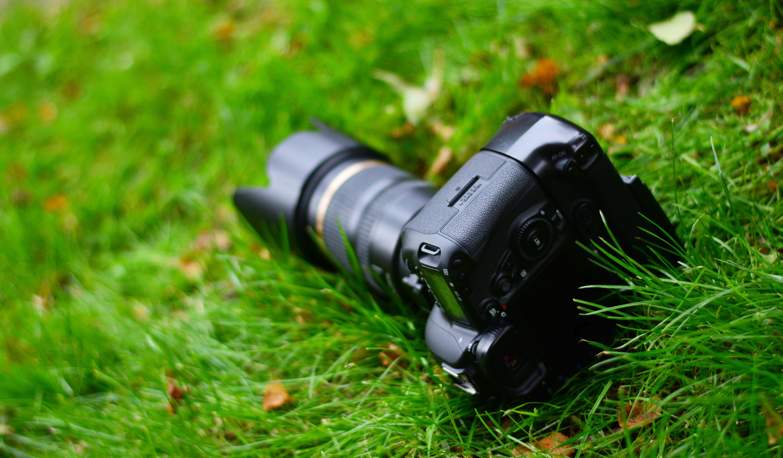 Фотография фотокамера боке траве вблизи 6000x3506 Фотоаппарат Размытый фон Трава Крупным планом