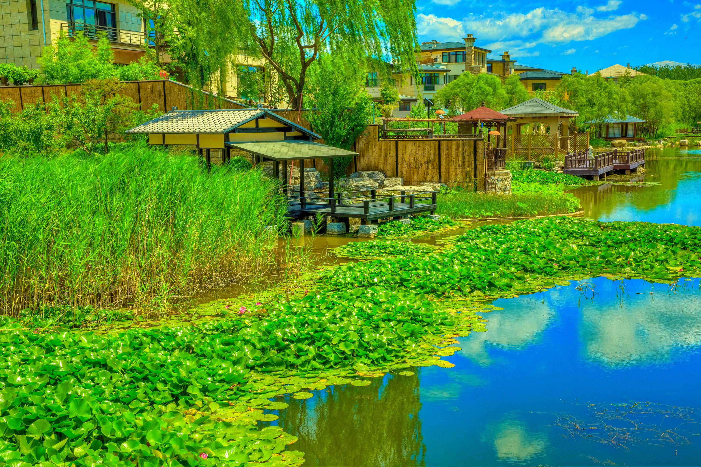 Фото Китай Beijing Zen Garden HDR Природа парк Водяные лилии речка Пристань 3002x2000 HDRI Парки Кувшинки Реки река Пирсы Причалы
