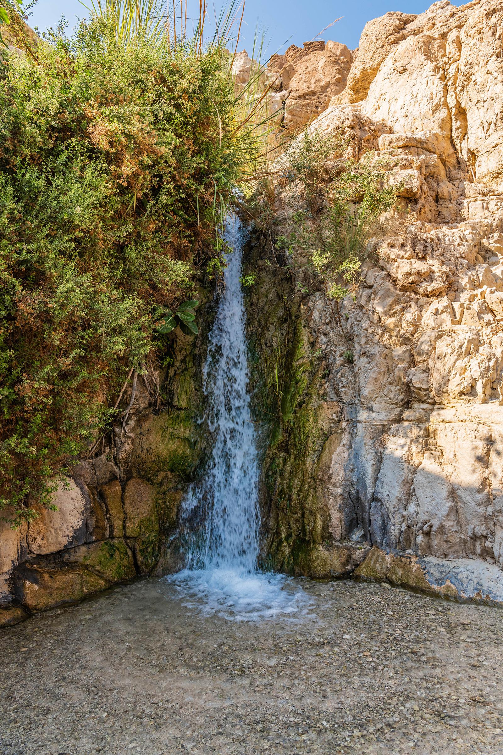Картинки Израиль David's Waterfall Скала Природа Водопады мхом  для мобильного телефона Утес скалы скале Мох мха