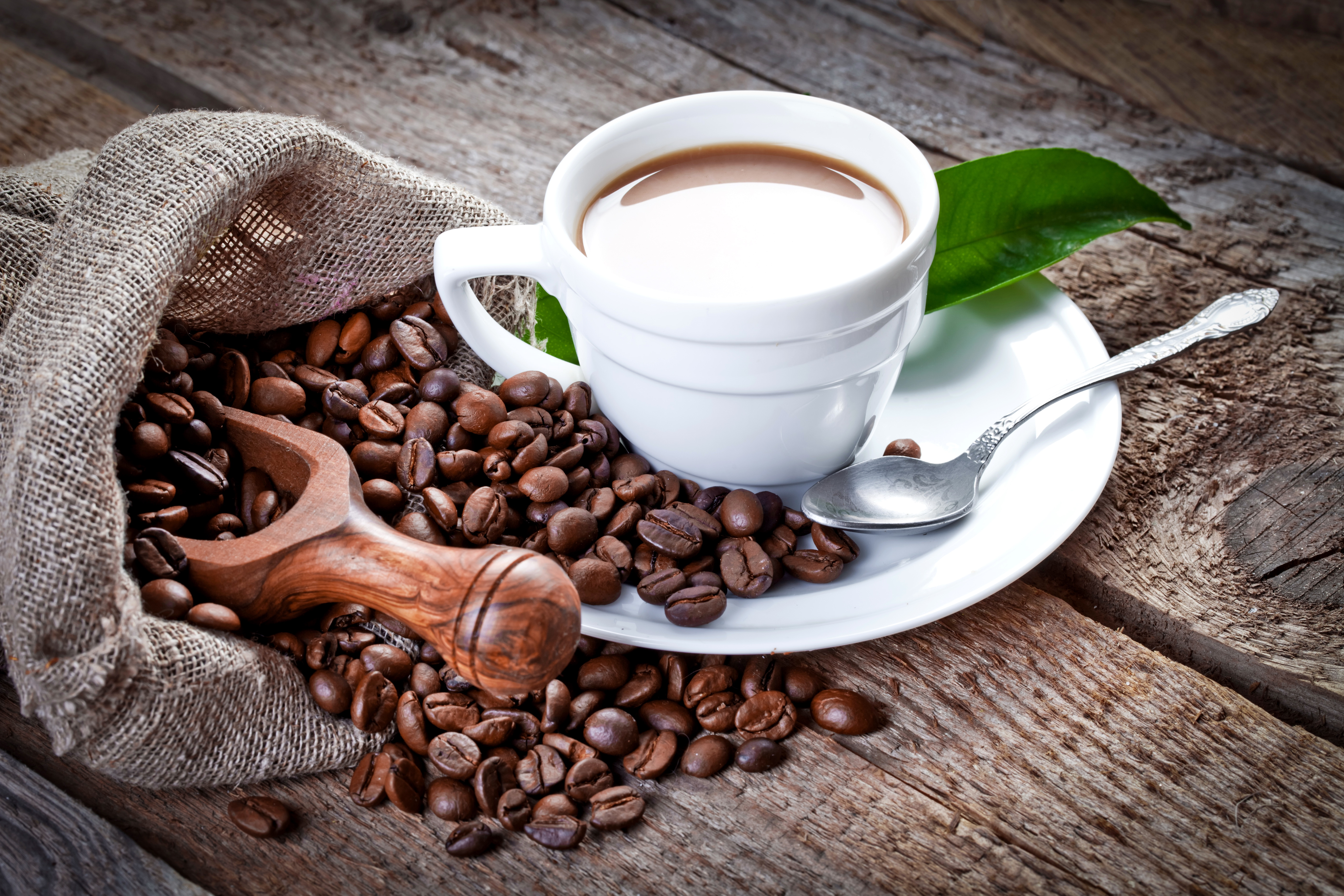 Кофе чашка ложка зерна бесплатно