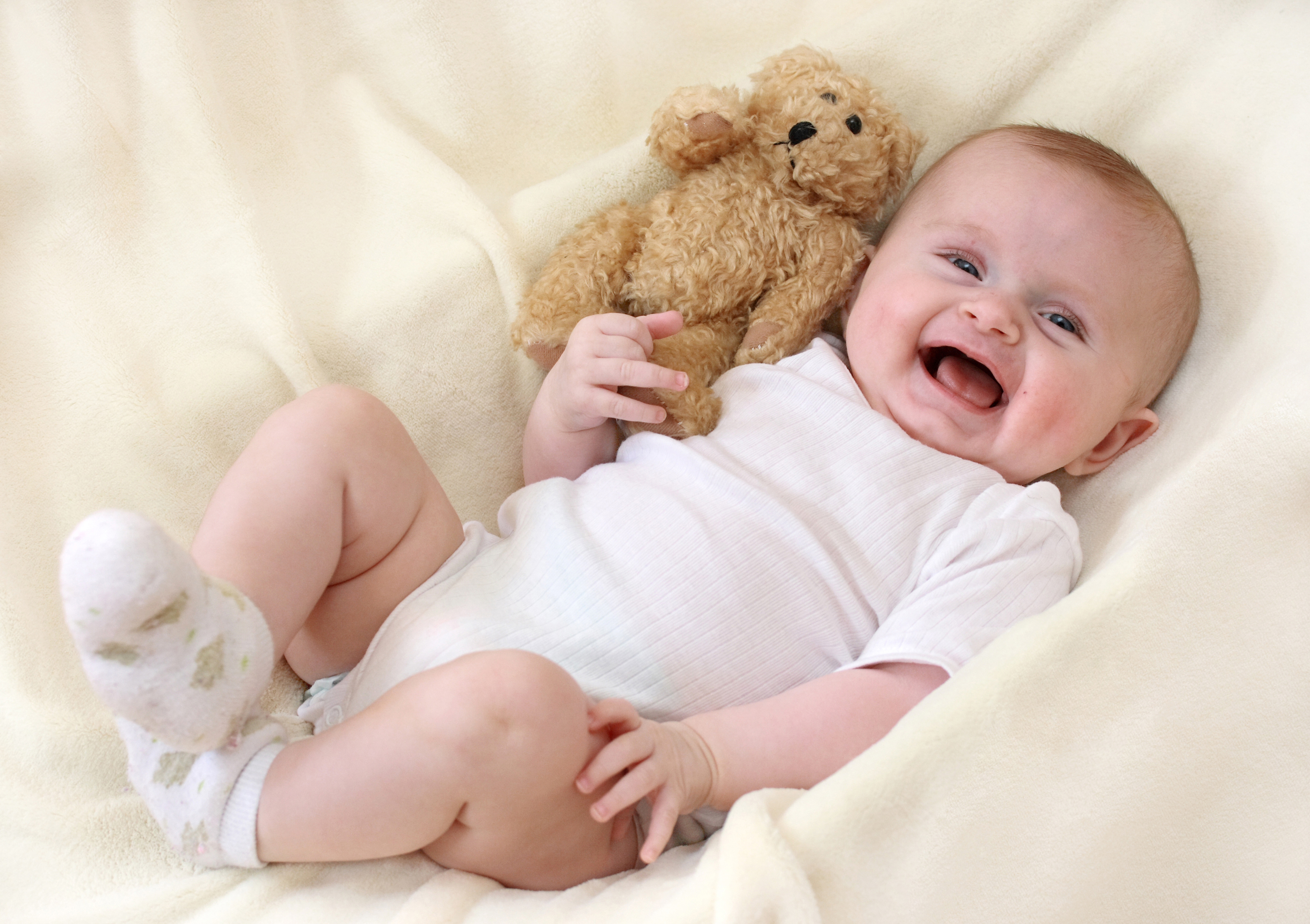Фотография грудной ребёнок Радость Дети Мишки 2800x1975 младенца младенец Младенцы счастье радостная радостный счастливые счастливая счастливый ребёнок Плюшевый мишка