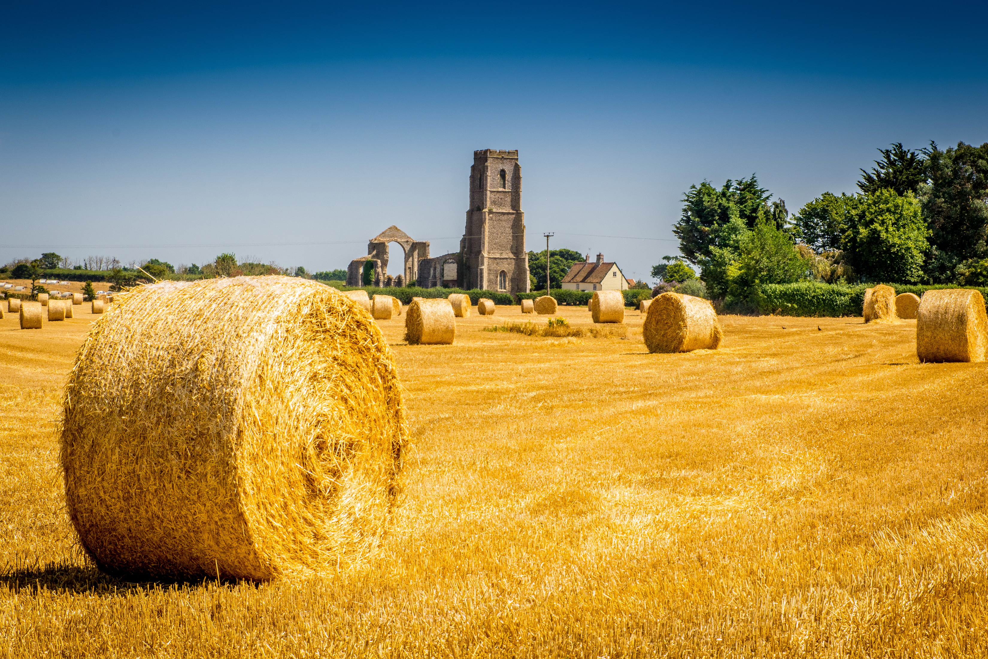 England_Fields_Covehithe_Hay_550788_3300
