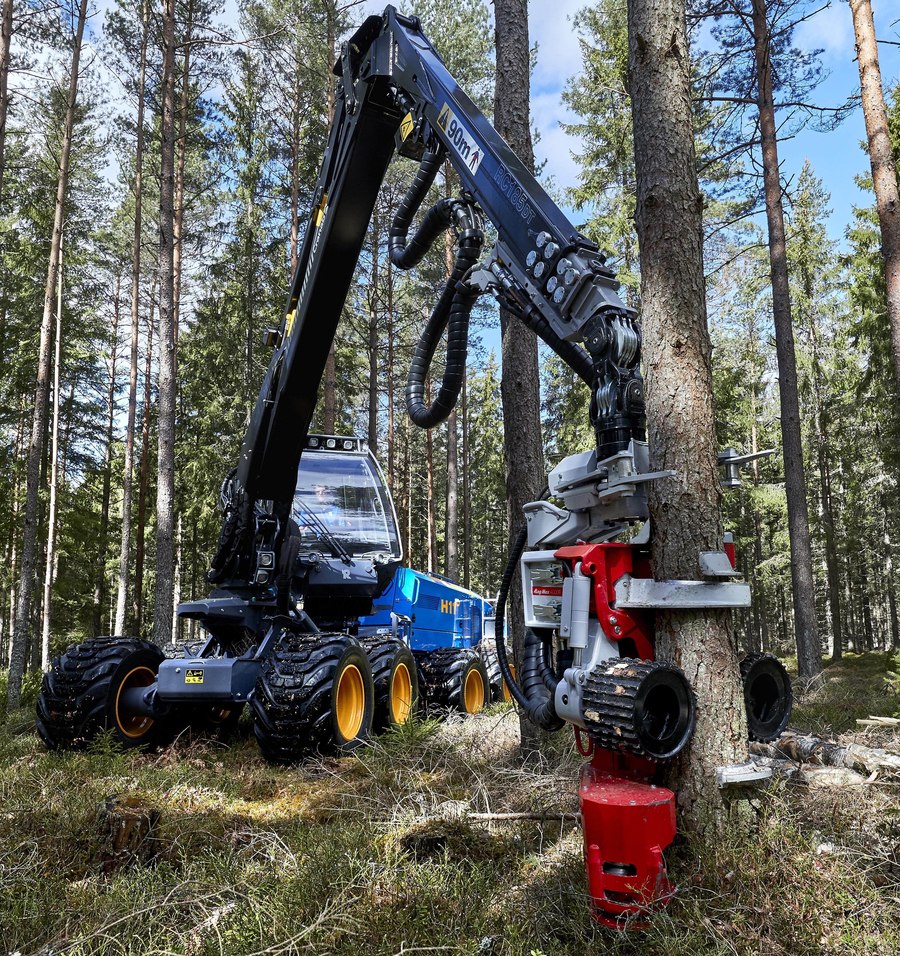 Картинка Форвардер Rottne F11D, Rottne H11D 8WD Леса Ствол дерева лес