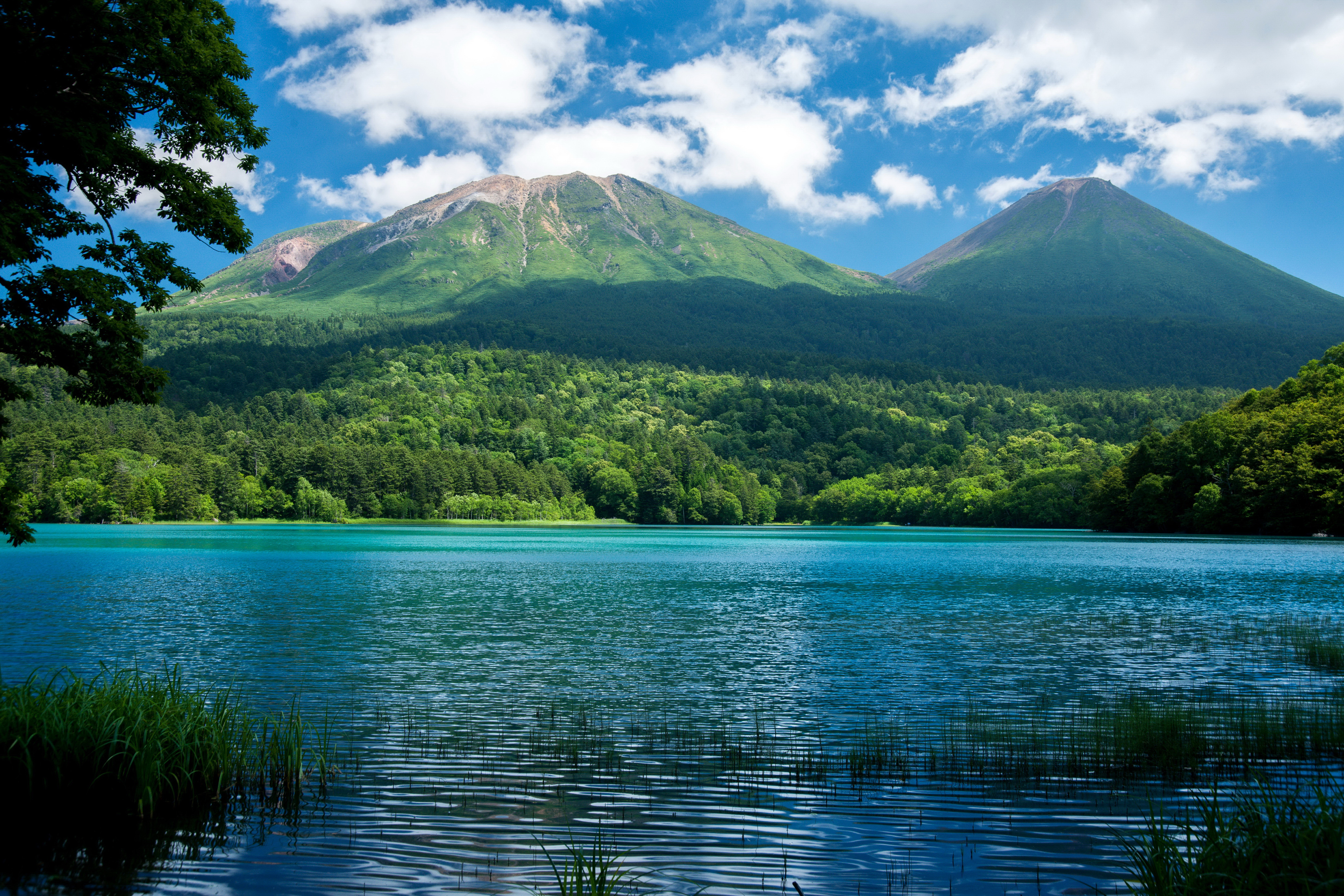 Гора озера зелень леса с высоты загрузить