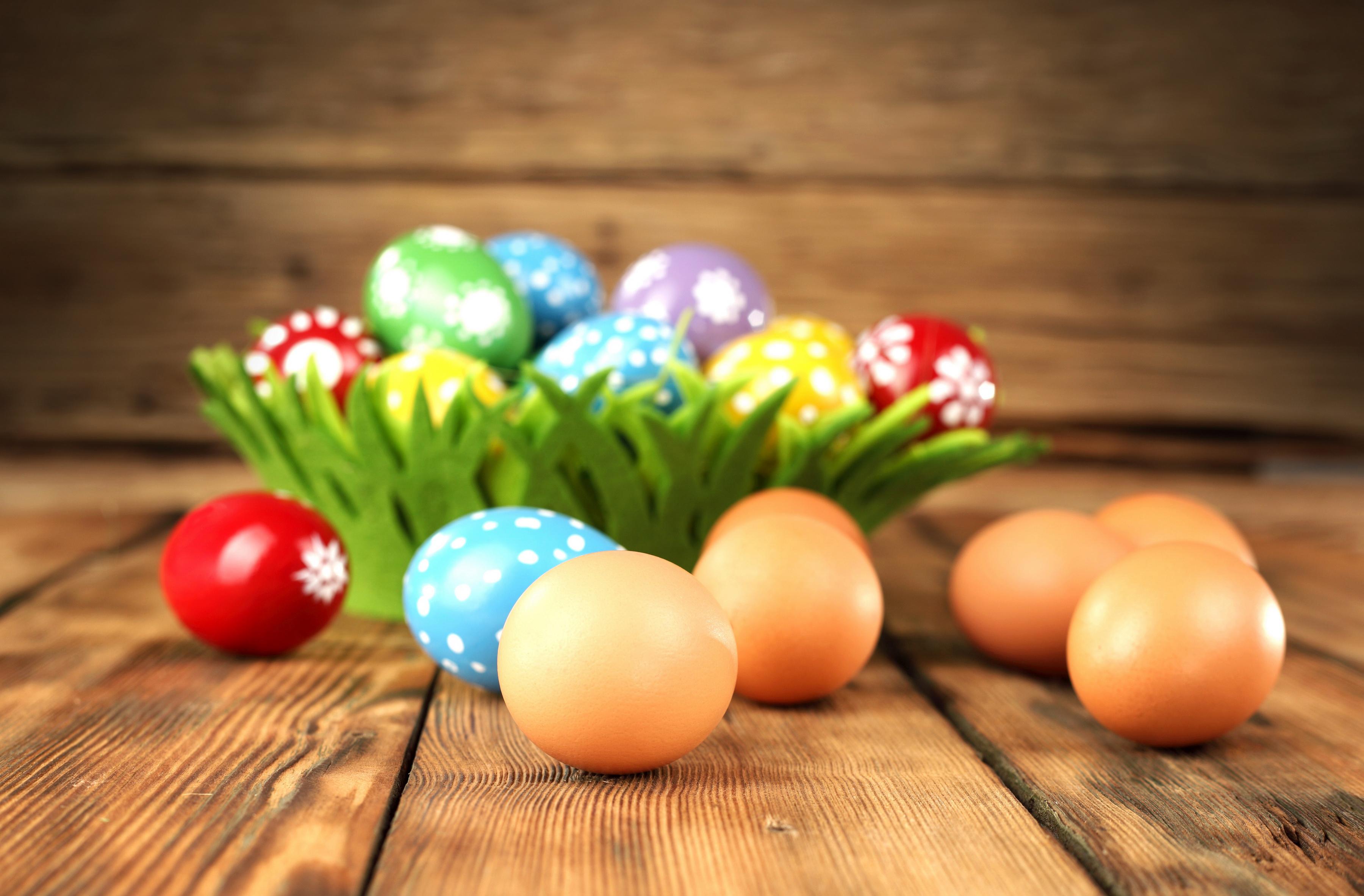Фотографии Пасха яйцами Праздники яиц Яйца яйцо