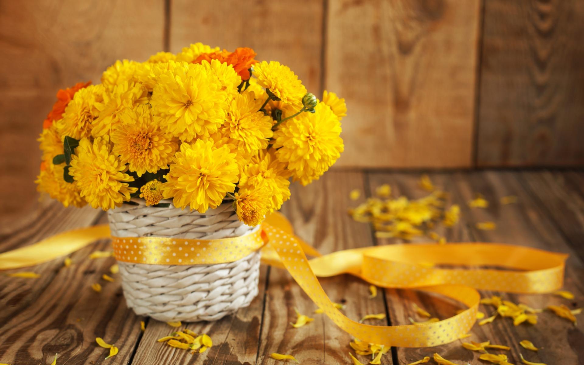 Фотография Букеты желтых Лепестки Цветы ленточка Желтый желтые желтая лепестков Лента