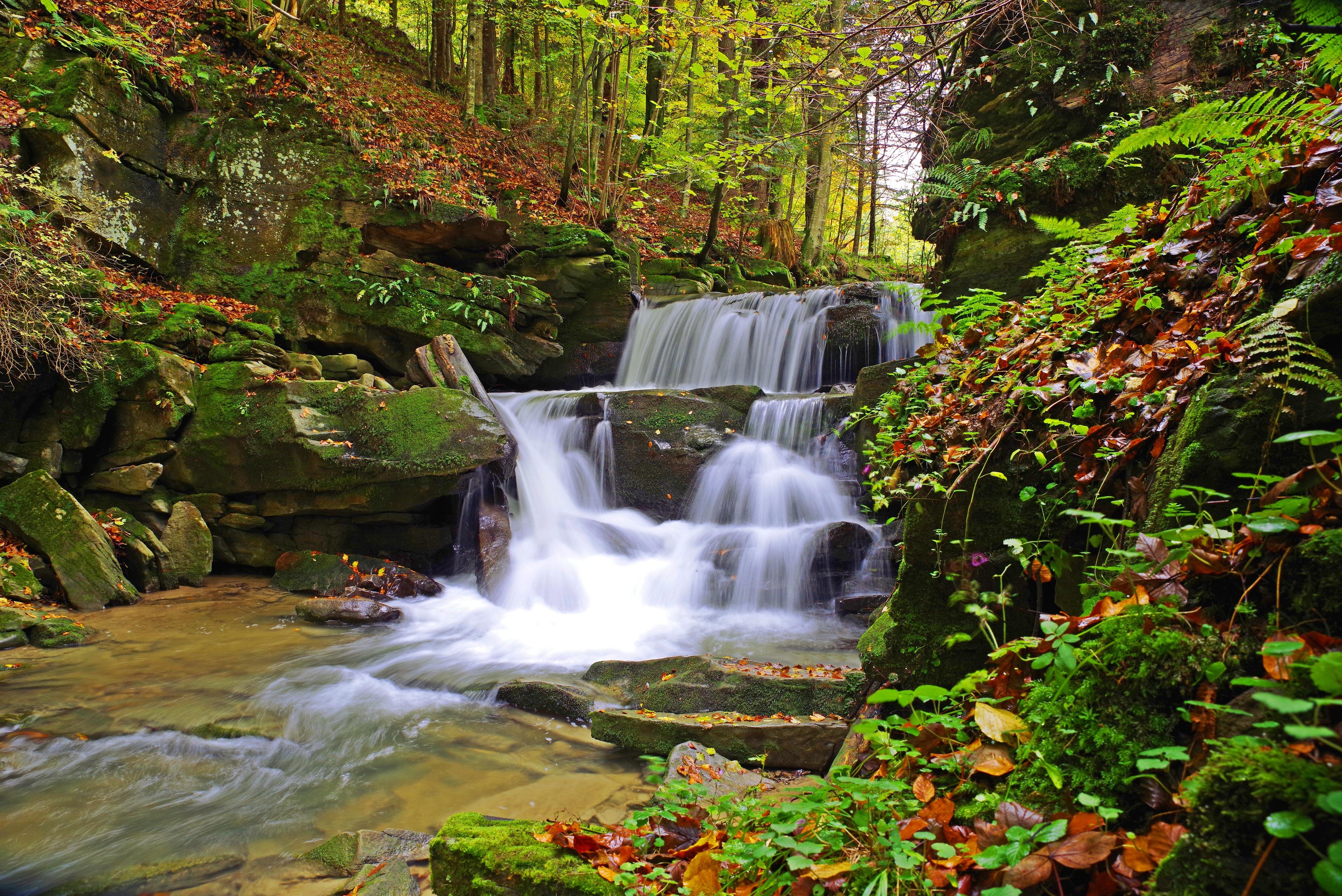 Фотография Листья Польша Bieszczady осенние Природа Водопады Мох Камень Листва Осень Камни
