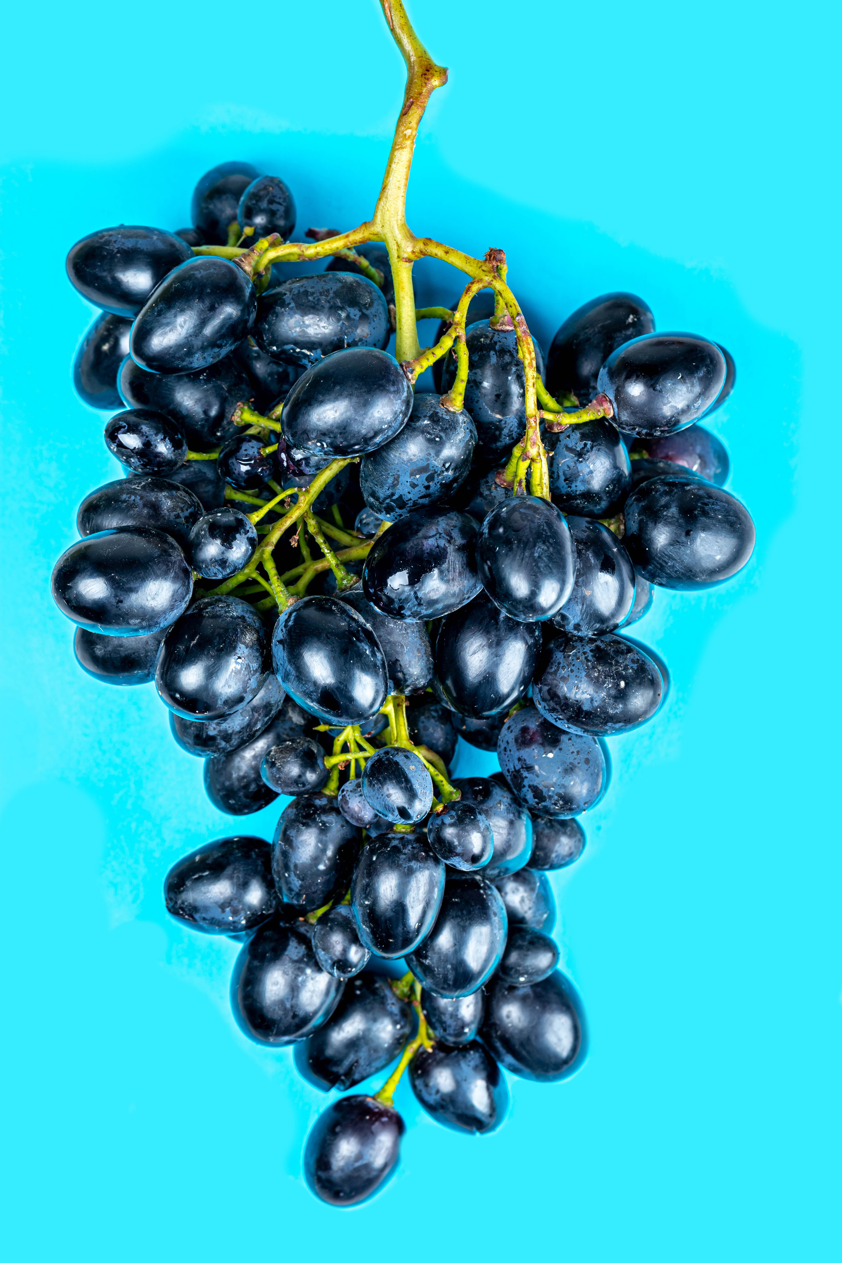 Фото Виноград Еда Крупным планом Цветной фон 2700x4050 для мобильного телефона Пища Продукты питания вблизи