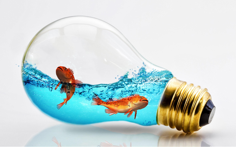 Фото Рыбы лампа накаливания Креатив воде животное Серый фон Лампочка креативные оригинальные Вода Животные сером фоне