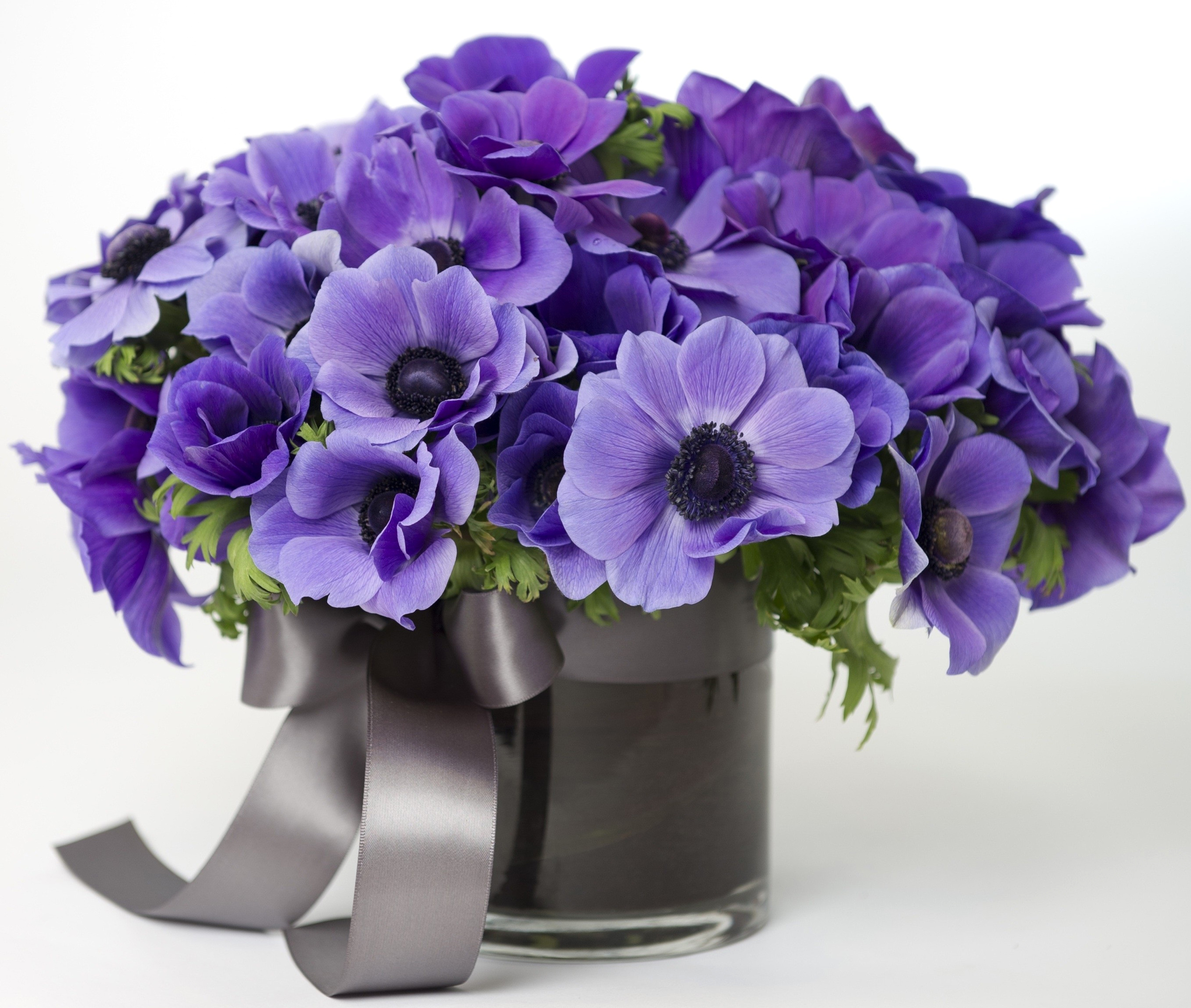 Bouquets_Anemones_Vase_465980.jpg
