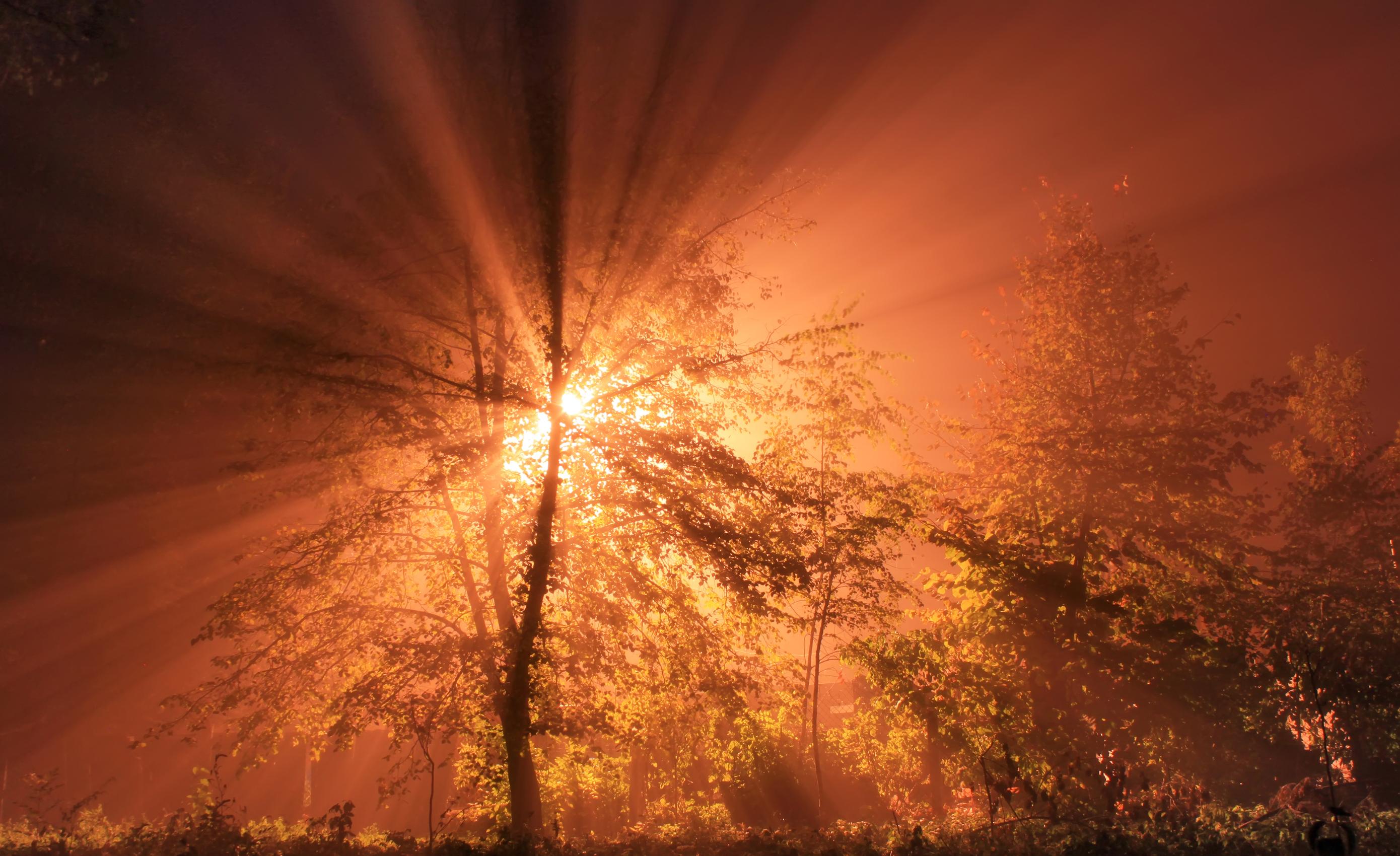 Обои для рабочего стола Лучи света Природа Небо рассвет и закат Рассветы и закаты