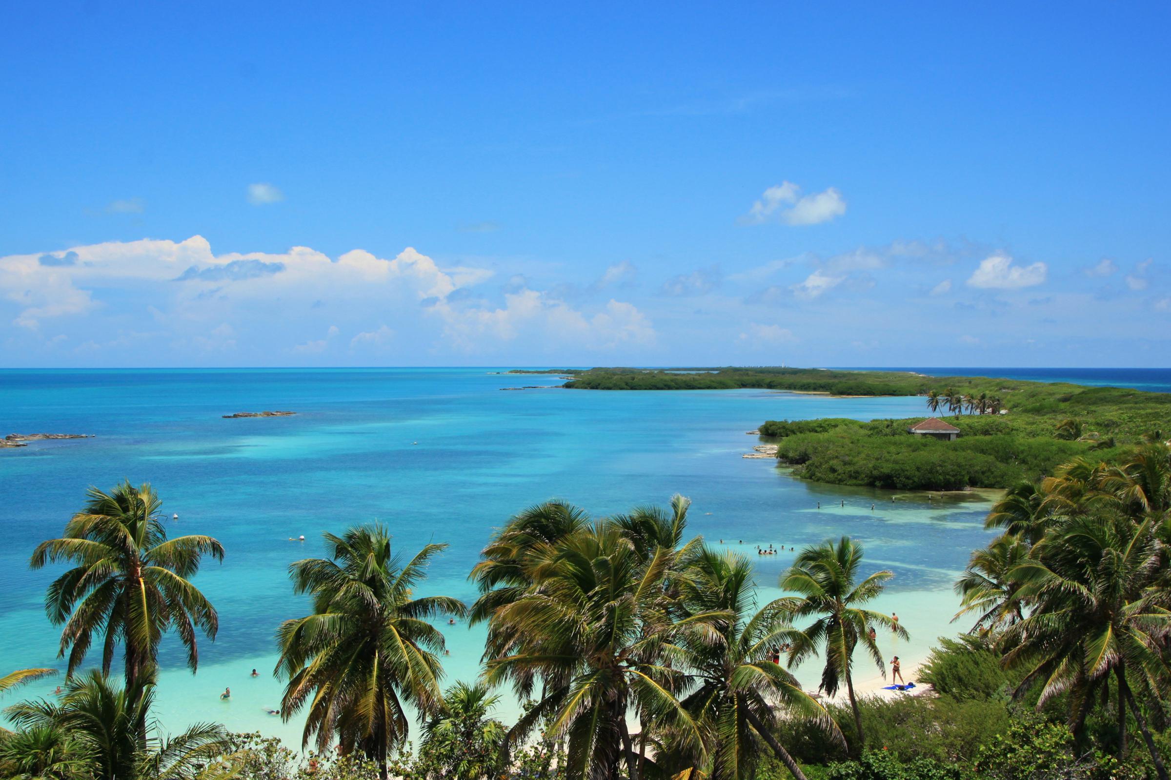 Обои для рабочего стола Мексика Cancun Море Природа Пальмы берег 2400x1600 пальм пальма Побережье