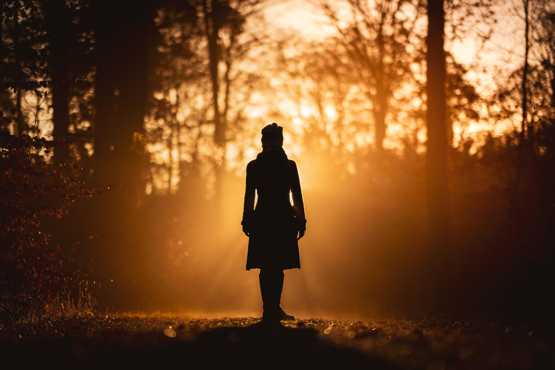 Фото силуэта Природа Девушки лес Утро дерево 3000x2001 Силуэт силуэты девушка молодая женщина молодые женщины Леса дерева Деревья деревьев