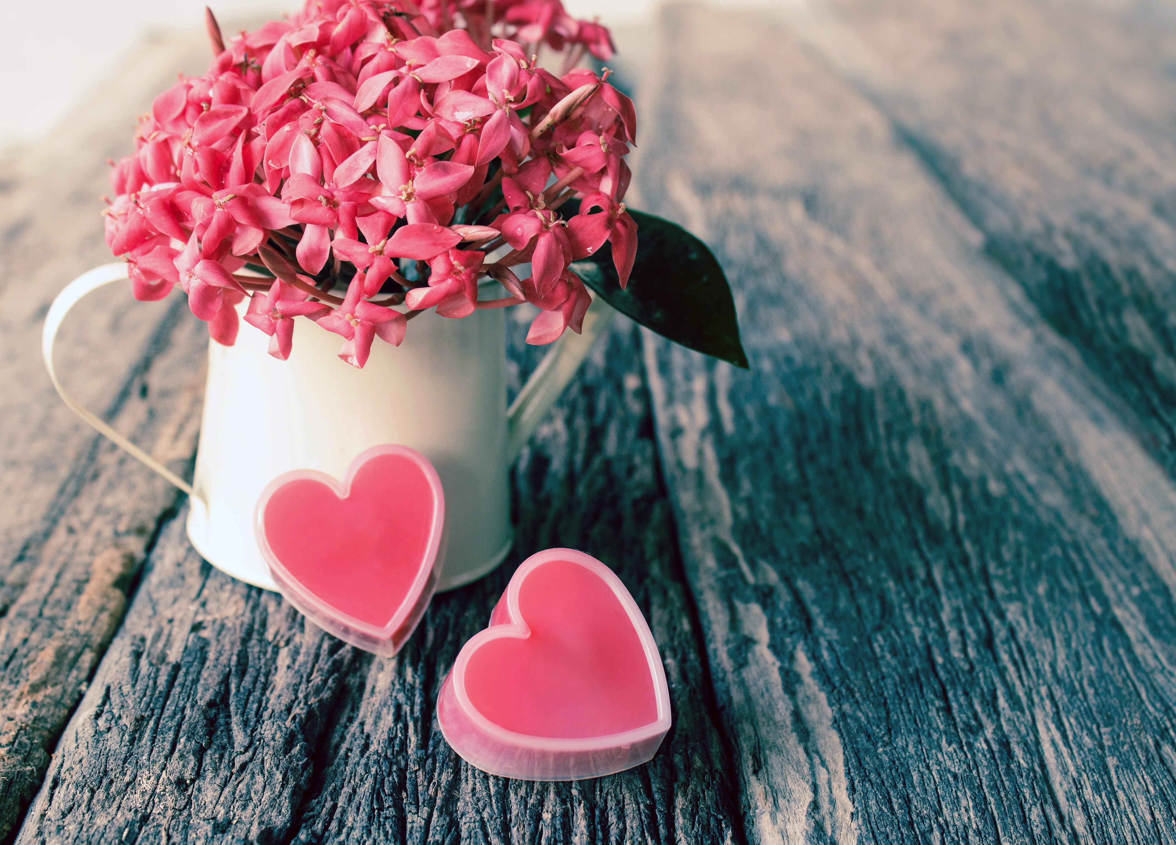Фотография День всех влюблённых сердечко Праздники День святого Валентина Сердце