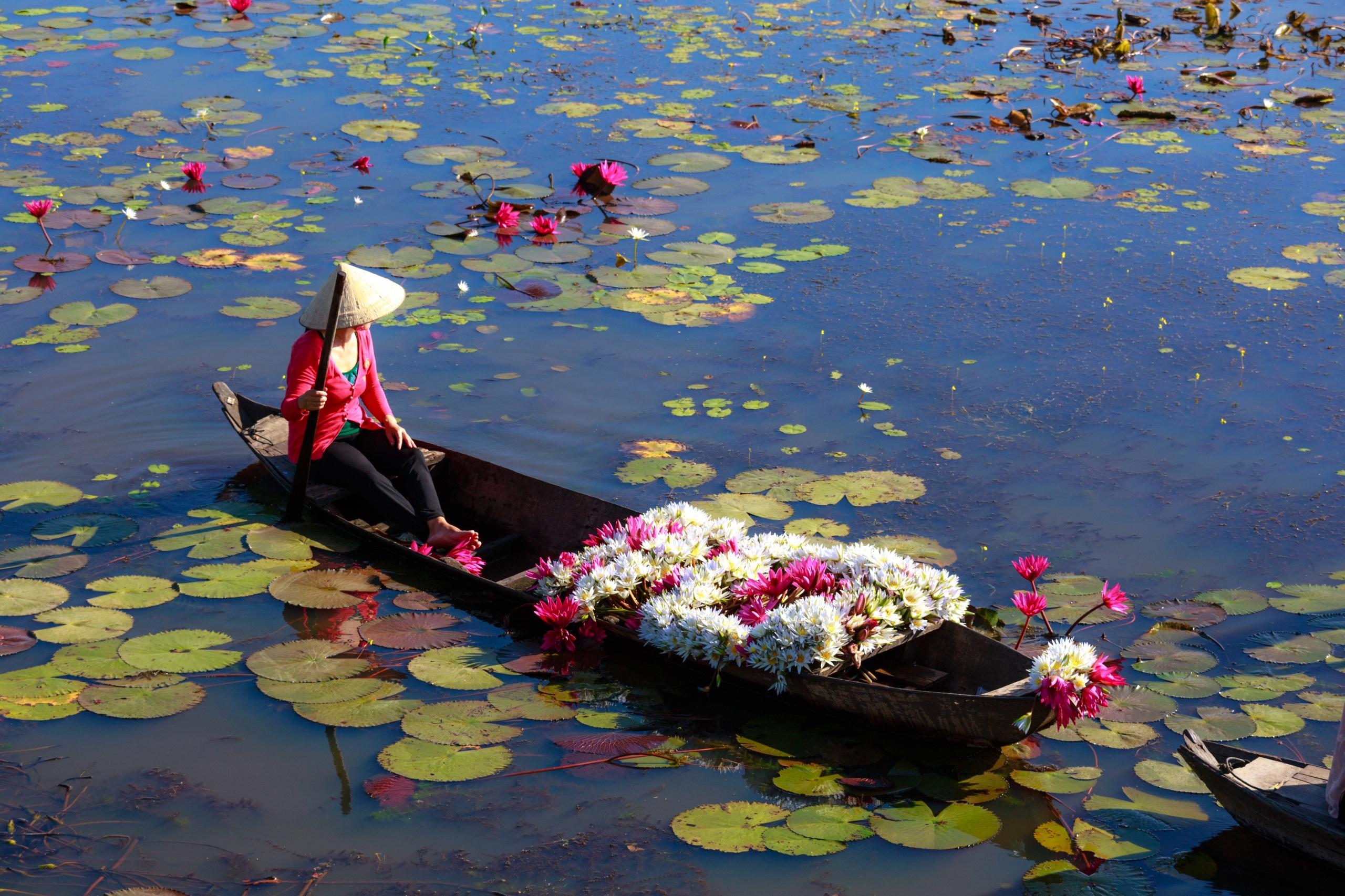 Фотография Работа шляпе Озеро Азиаты цветок Кувшинки Лодки 2560x1706 работают работает Шляпа шляпы Цветы азиатка азиатки Водяные лилии