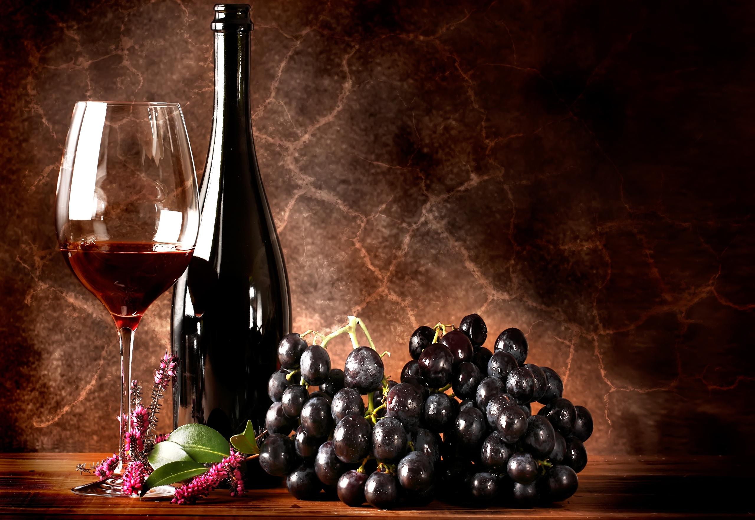 красное вино бокалы графин бесплатно