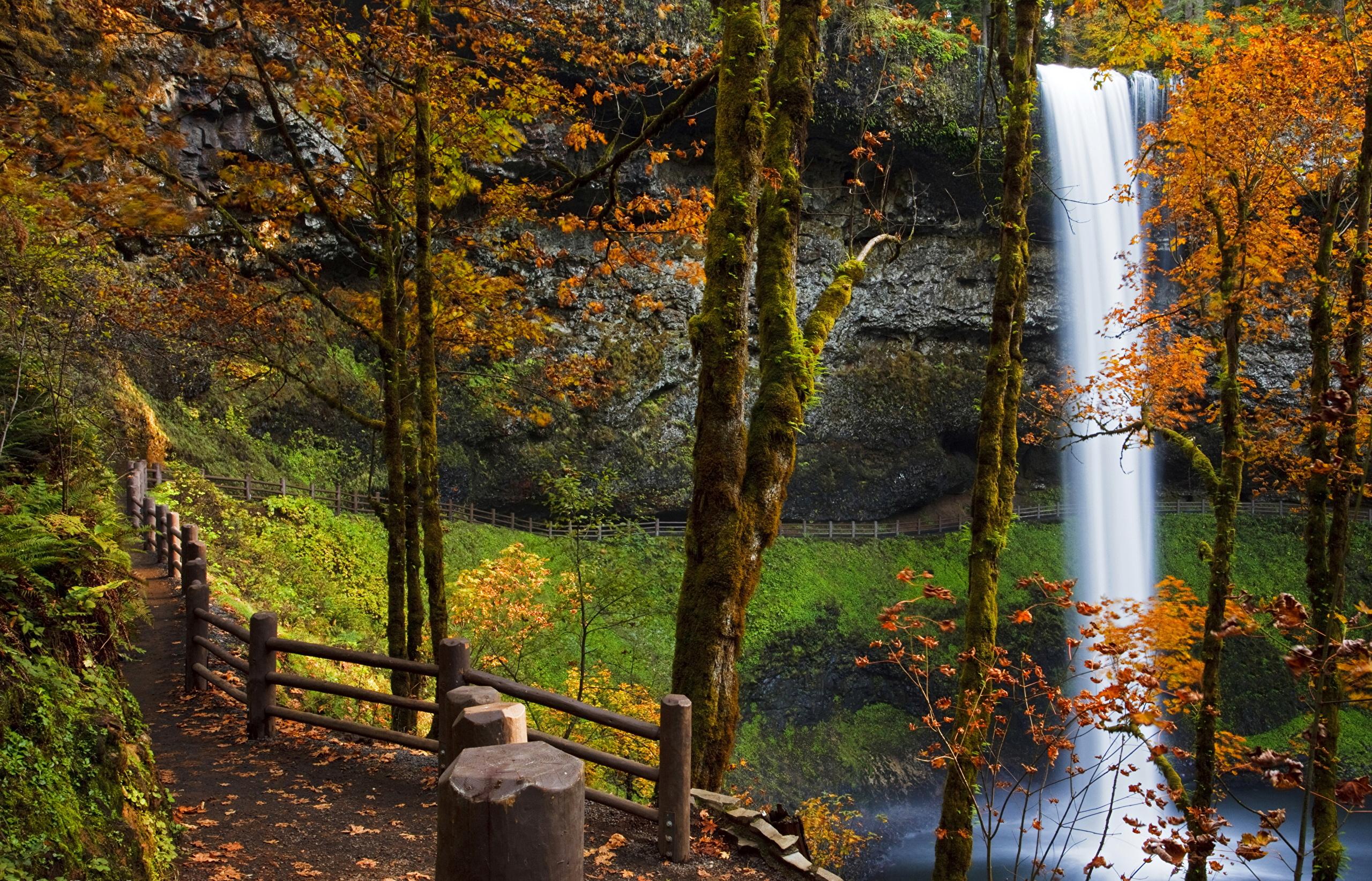 природа скалы водопады река деревья без смс