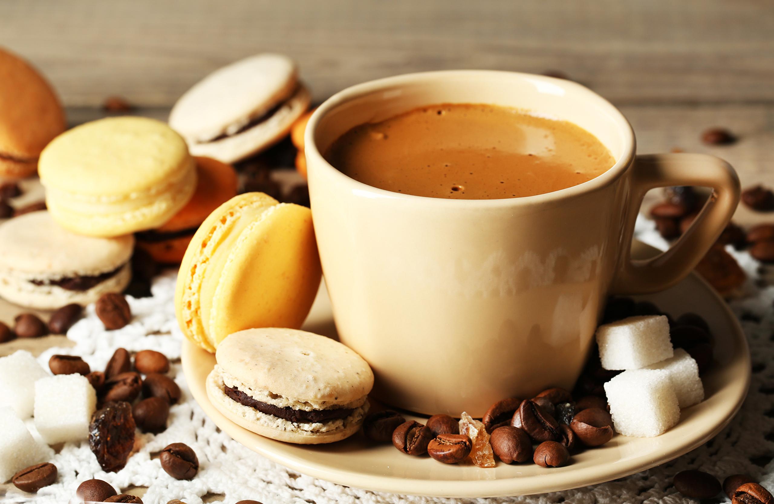 https://s1.1zoom.ru/big7/494/Coffee_Cup_Macaron_Grain_449336.jpg