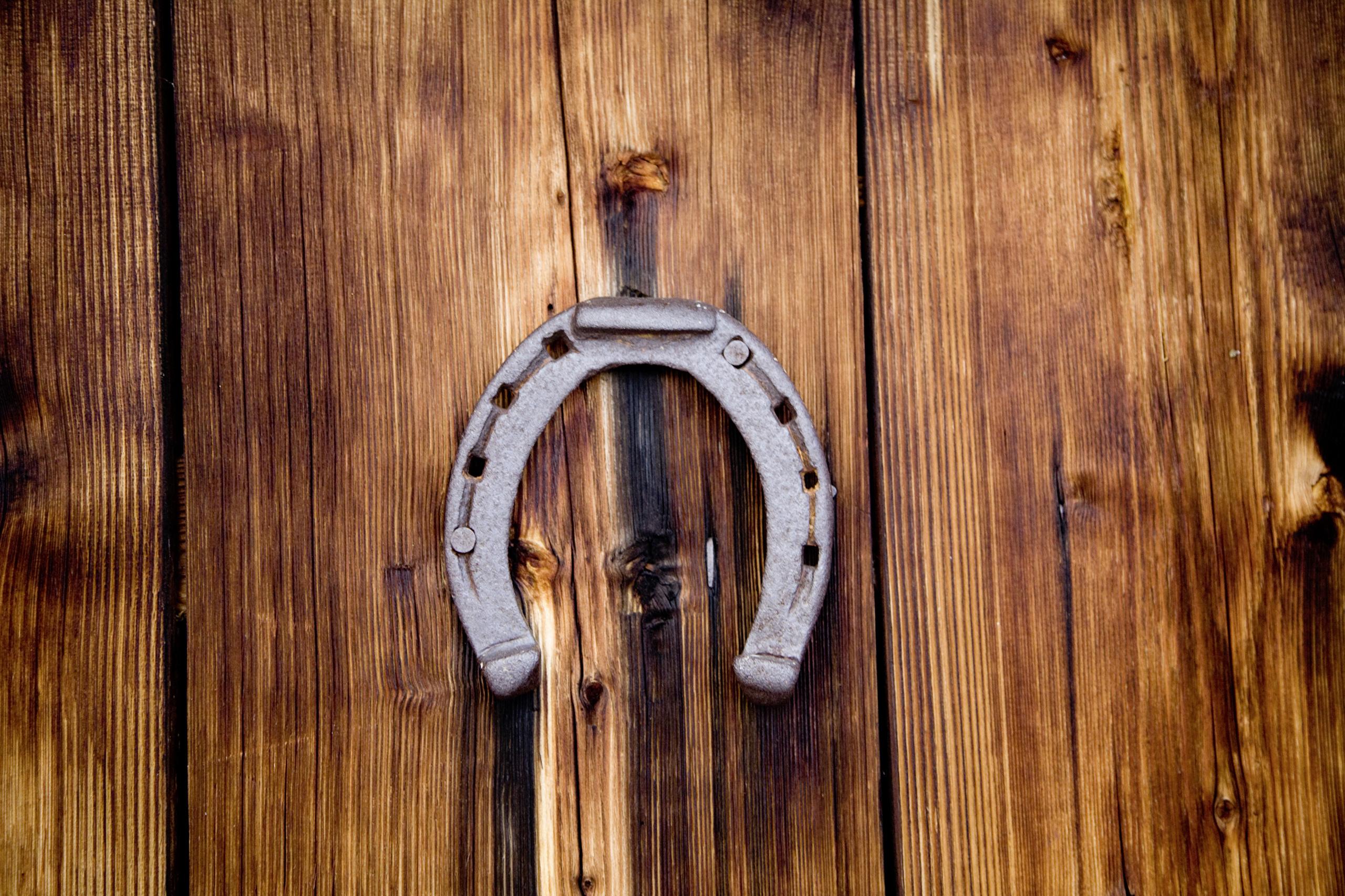 подкова horseshoe без смс