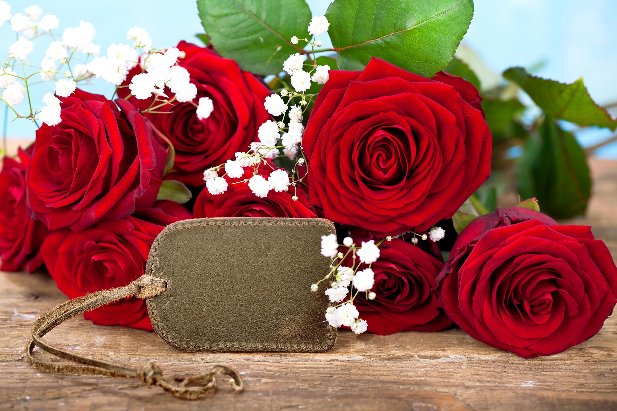 розы, гипсофила, бутоны без смс