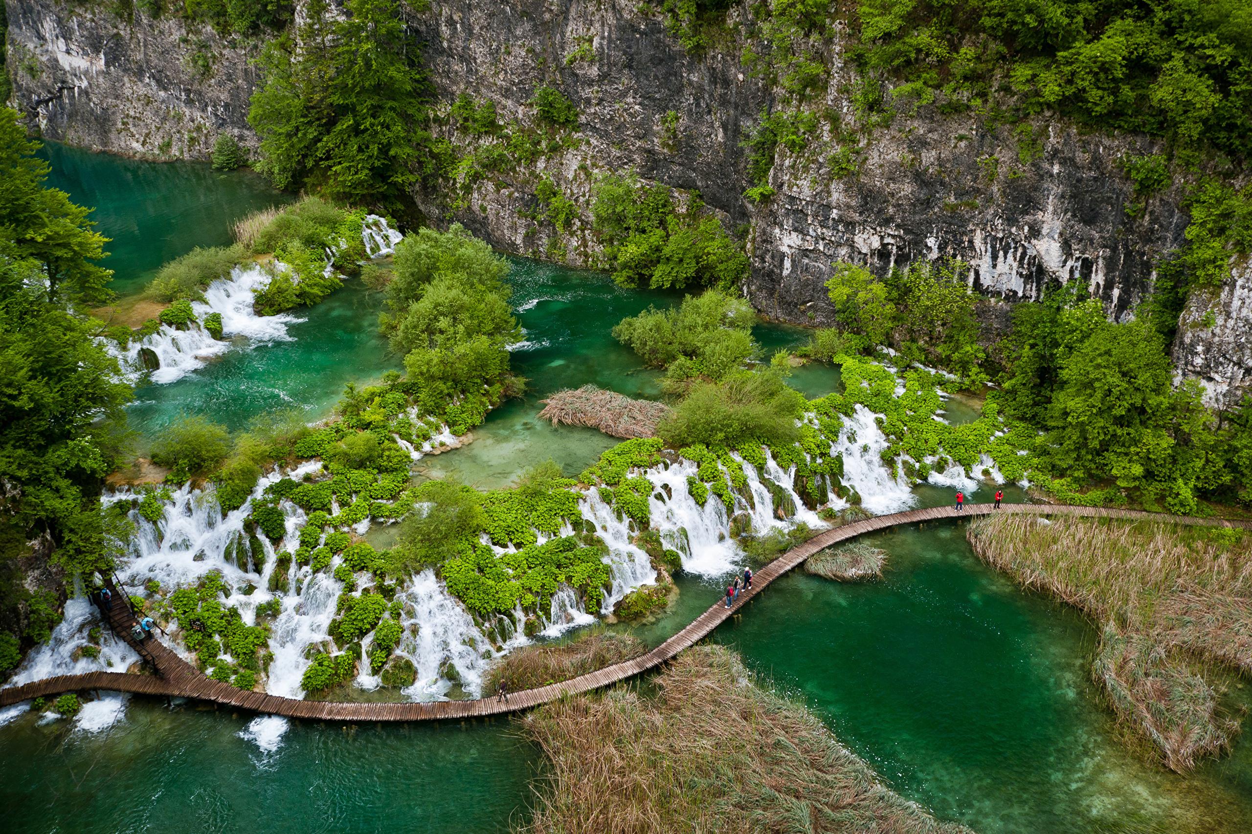 зеленая растительность, вода, горы бесплатно