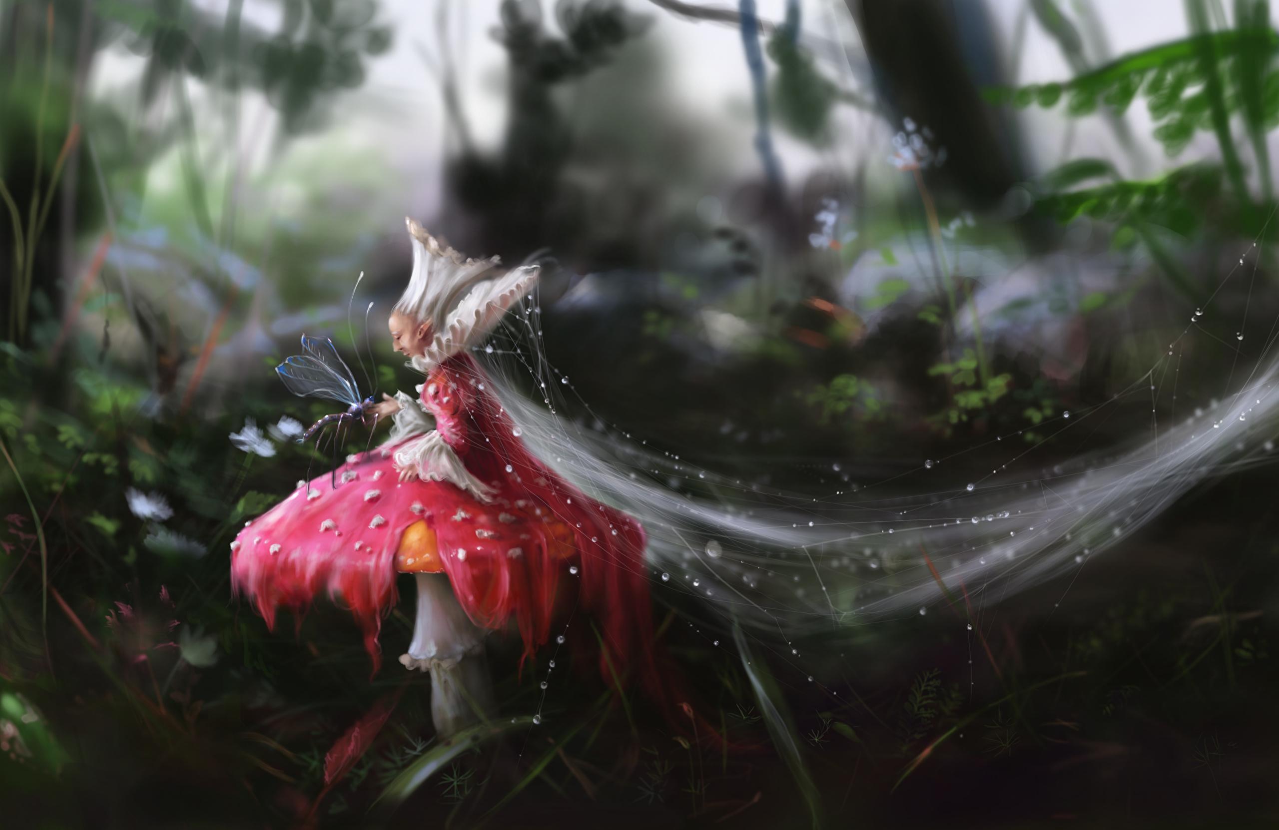 Паутина в лесу загрузить