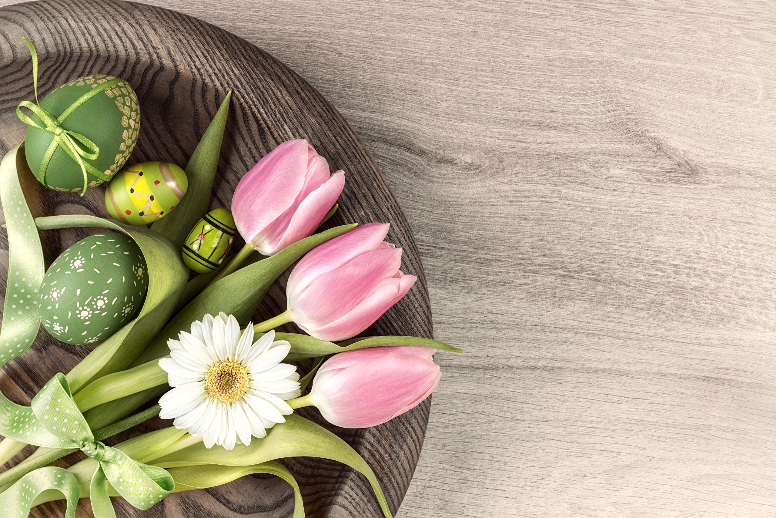 Обои для рабочего стола Пасха яйцами тюльпан Цветы ромашка дизайна 2560x1708 яиц Яйца яйцо Тюльпаны цветок Ромашки Дизайн