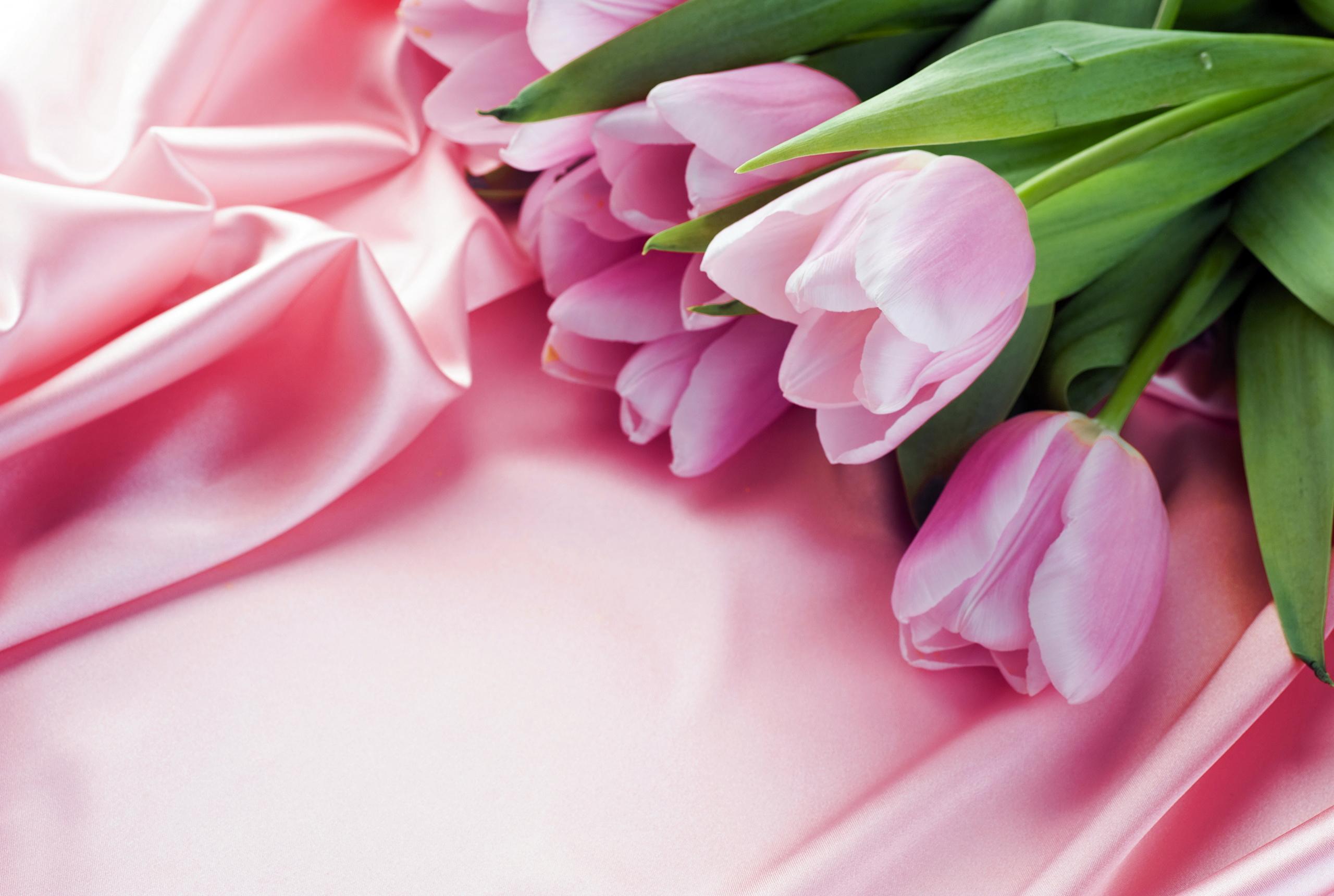 исторических романа поздравление с 8 марта с цветами фото этой