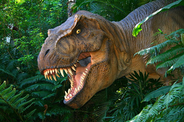 the description of the extinct tyrannosaurus rex dinosaurs How did the dinosaurs become extinct this is a question that has stumped scientists ever since dinosaur fossils were first tyrannosaurus rex: brontosaurus.