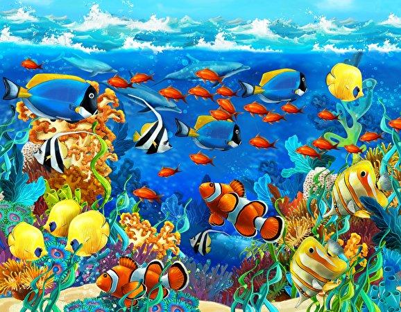Обои для рабочего стола Рыбы Подводный мир Животные 578x450 животное