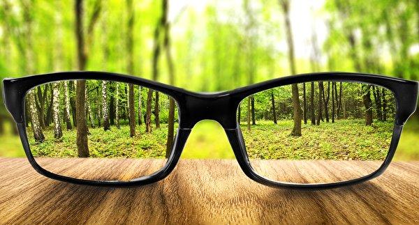 Обои для рабочего стола лес Очки вблизи 600x323 Леса очков очках Крупным планом