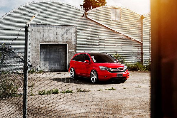Фотография Хонда cr-v красная Автомобили 600x402 Honda Красный красные красных авто машины машина автомобиль