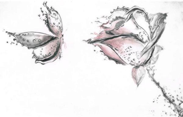 Фото Бабочки роза цветок Животные Рисованные 600x385 бабочка Розы Цветы животное