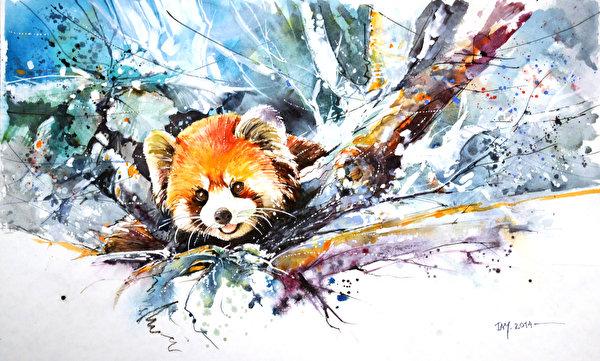 Смотреть фото панды