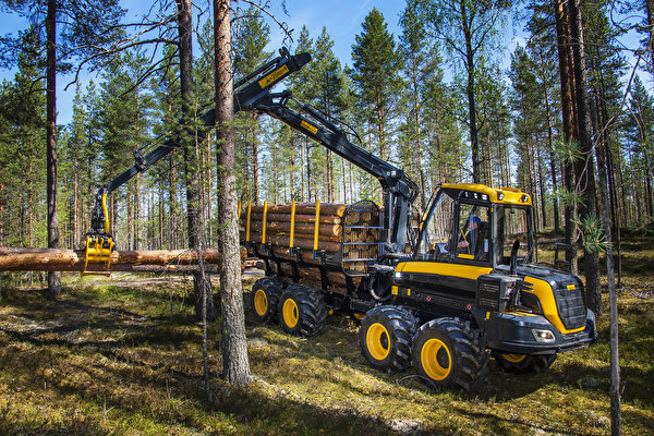 Фотографии Форвардер 2014-17 Ponsse Wisent 8w бревно лес 600x400 Бревна Леса