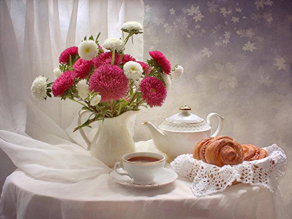 Астры цветы обои на рабочий стол