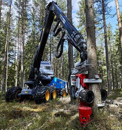 Картинка Форвардер Rottne F11D, Rottne H11D 8WD Леса Ствол дерева 423x450 лес