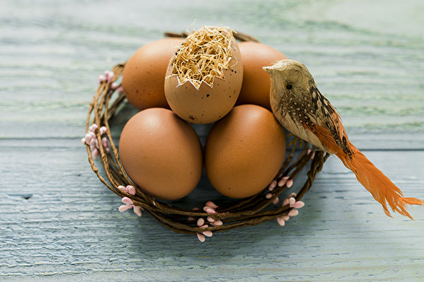 Фото Пасха Птицы яйцами гнезда Праздники Доски 600x400 птица яиц яйцо Яйца Гнездо гнезде
