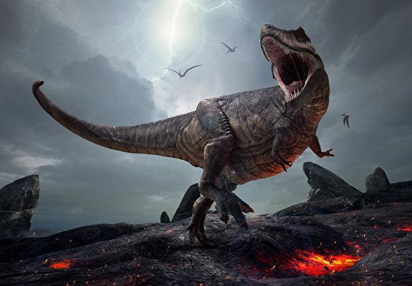 Фотография Тираннозавр рекс Динозавры 3д злость 600x417 динозавр 3D Графика злой Оскал рычит