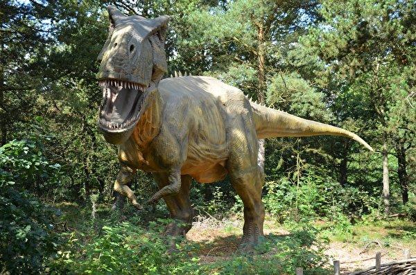 Фотография Тираннозавр рекс динозавр рычит Скульптуры 600x397 Динозавры злой Оскал злость скульптура