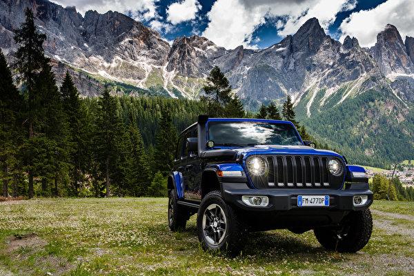 Обои для рабочего стола Jeep SUV 2019 Wrangler Unlimited Sahara 1941 by Mopar синих Автомобили 600x400 Джип Внедорожник синяя синие Синий авто машины машина автомобиль