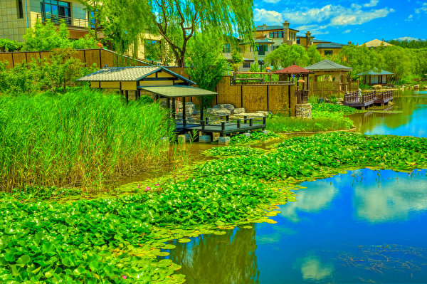 Фото Китай Beijing Zen Garden HDR Природа парк Водяные лилии речка Пристань 600x399 HDRI Парки Кувшинки Реки река Пирсы Причалы