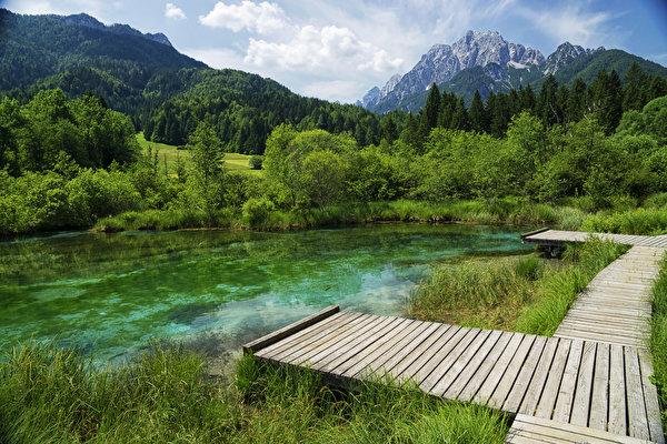 Картинка Словения Zelenci Lake гора Природа лес Озеро Пирсы 600x400 Горы Леса Причалы Пристань