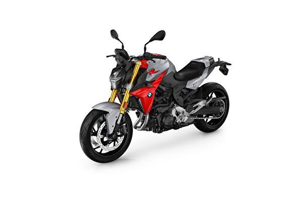 Картинки БМВ F 900 R, 2020 мотоцикл белом фоне 600x400 BMW - Мотоциклы Мотоциклы Белый фон белым фоном