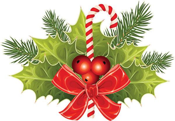 Фотографии Листва Рождество бант Ягоды Ветки 600x417 лист Листья Новый год ветвь ветка Бантик бантики на ветке